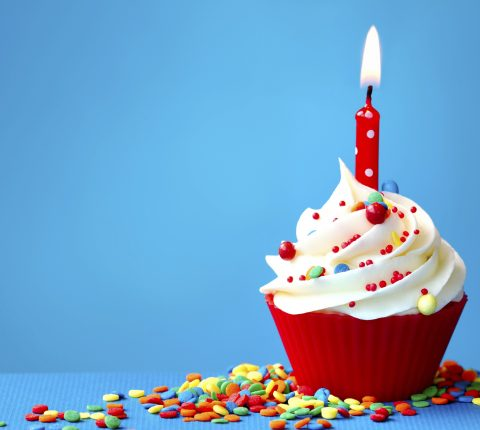 언니네트워크 12주년 기념파티 : 언니는 열두살!