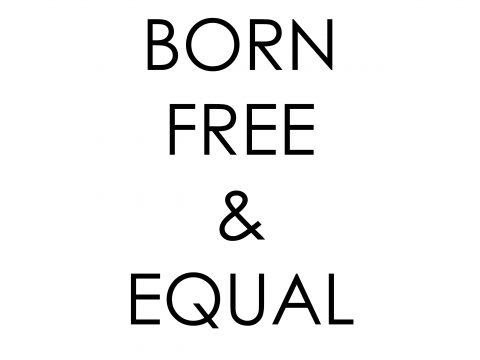 [회원감자모임] (양)성평등은 어쩌다 이상해졌을까?